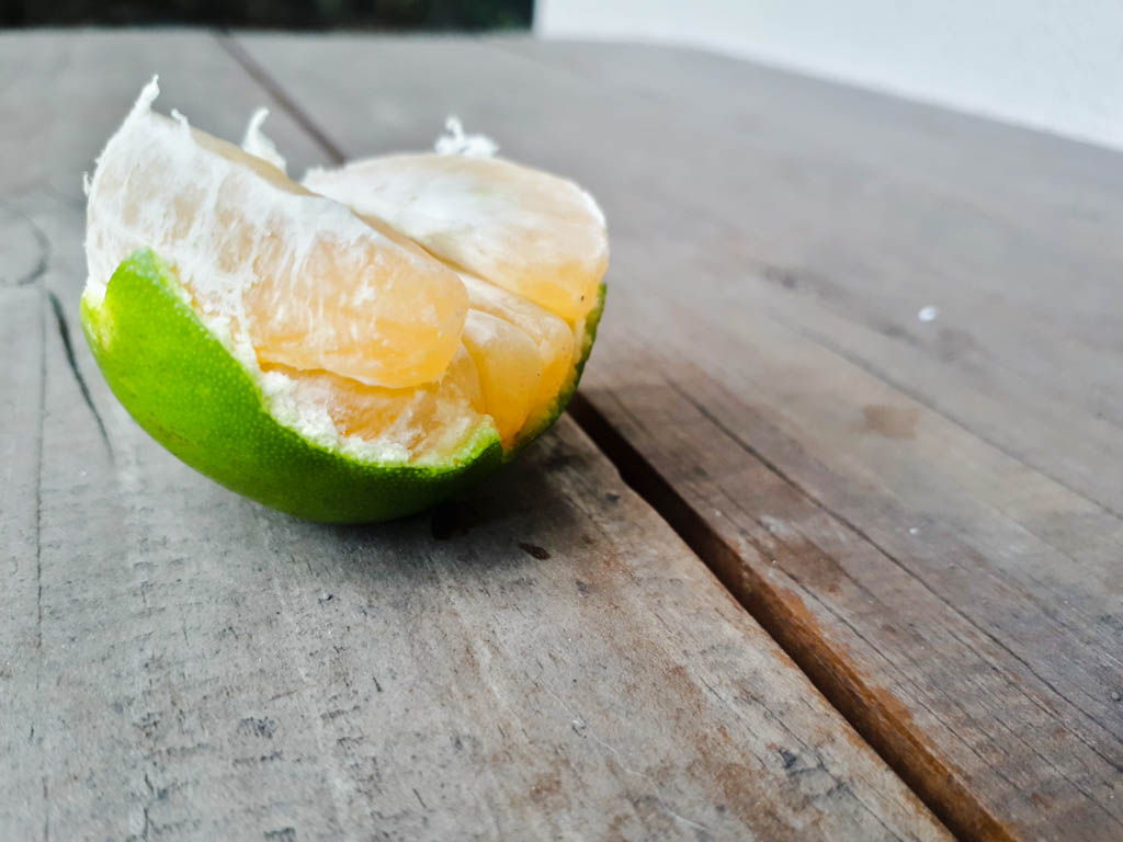 fruits in the Philippines - dalanghita