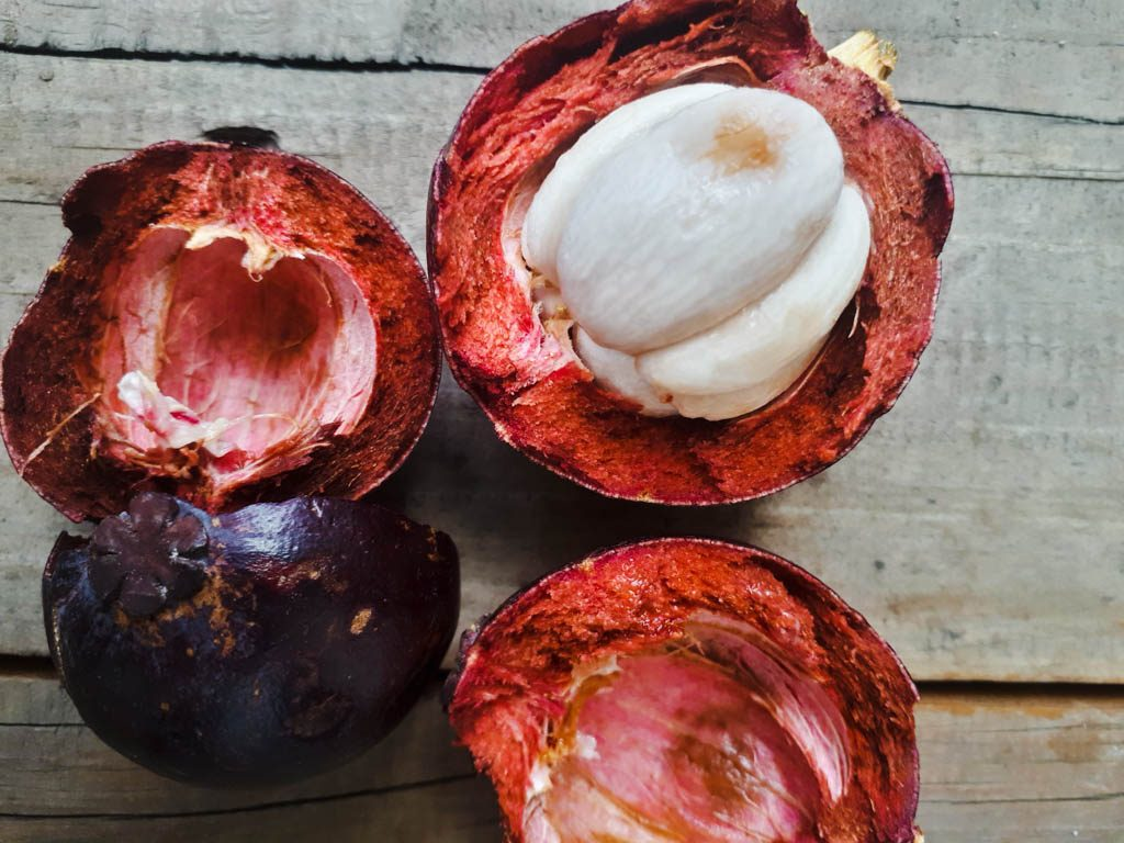 fruits in the Philippines - mangoosten open and cut in two