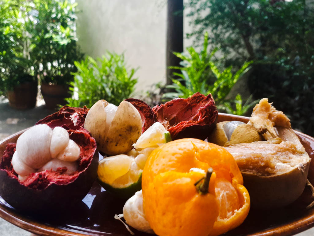 Fruits in the Philippines - bowl of fruit with mangoosten kiat kiat, chico, lanzones and others