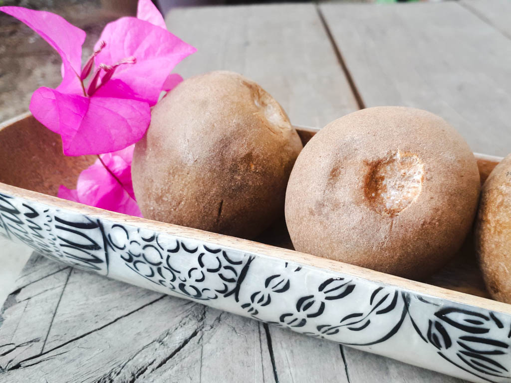 fruits in the Philippines - chico in a bowl not opened